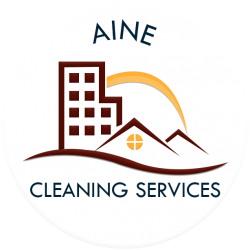 aine cleaning services